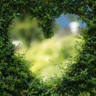 Tauro: Compatibilidad en el amor y pareja ideal